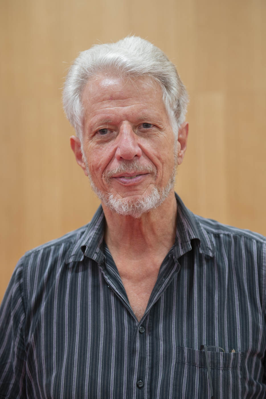 Raymond Marcelli
